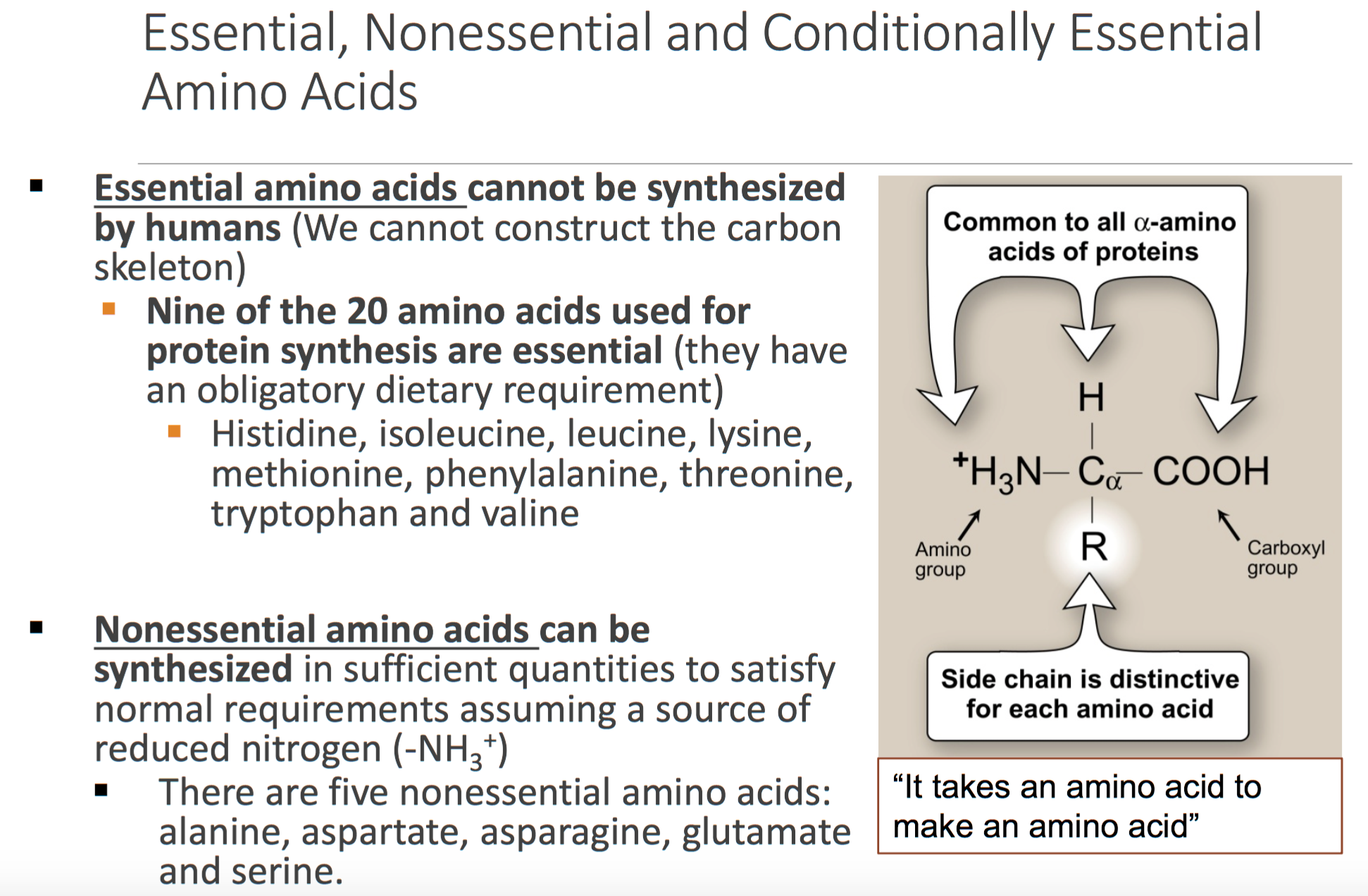 Amino acid good for sex