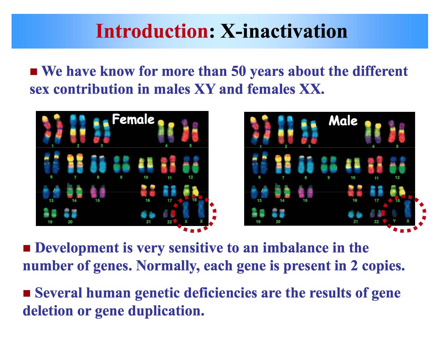Pity, that Male pattern baldness sexlinked gene