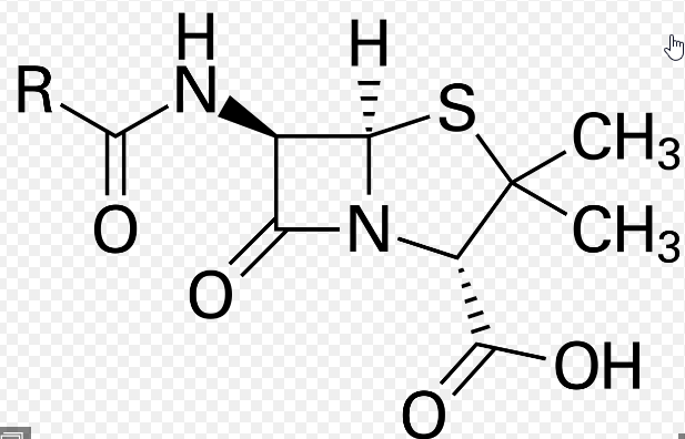 Sketchy Pharm: Antibiotics (Antibiotics: Cell wall and