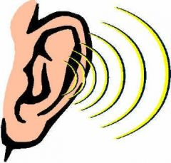 Image result for sound science
