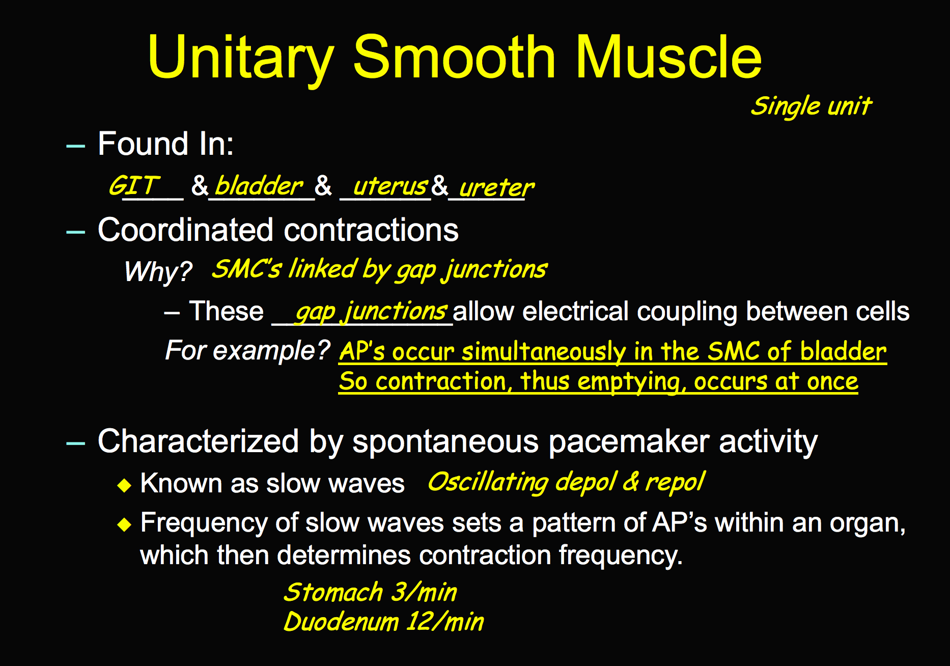 Ccf Physiology L14 Smooth Muscle Flashcards Memorang