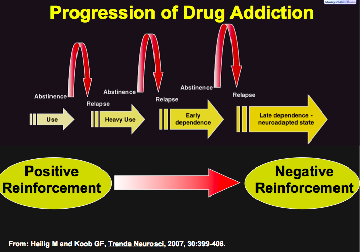 Image result for drug use reinforcement