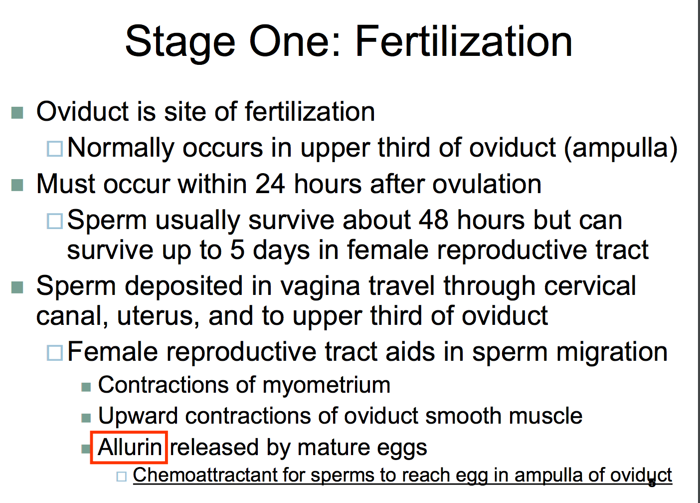 Where Does Fertilization Occur Image Collections Human Body Organ
