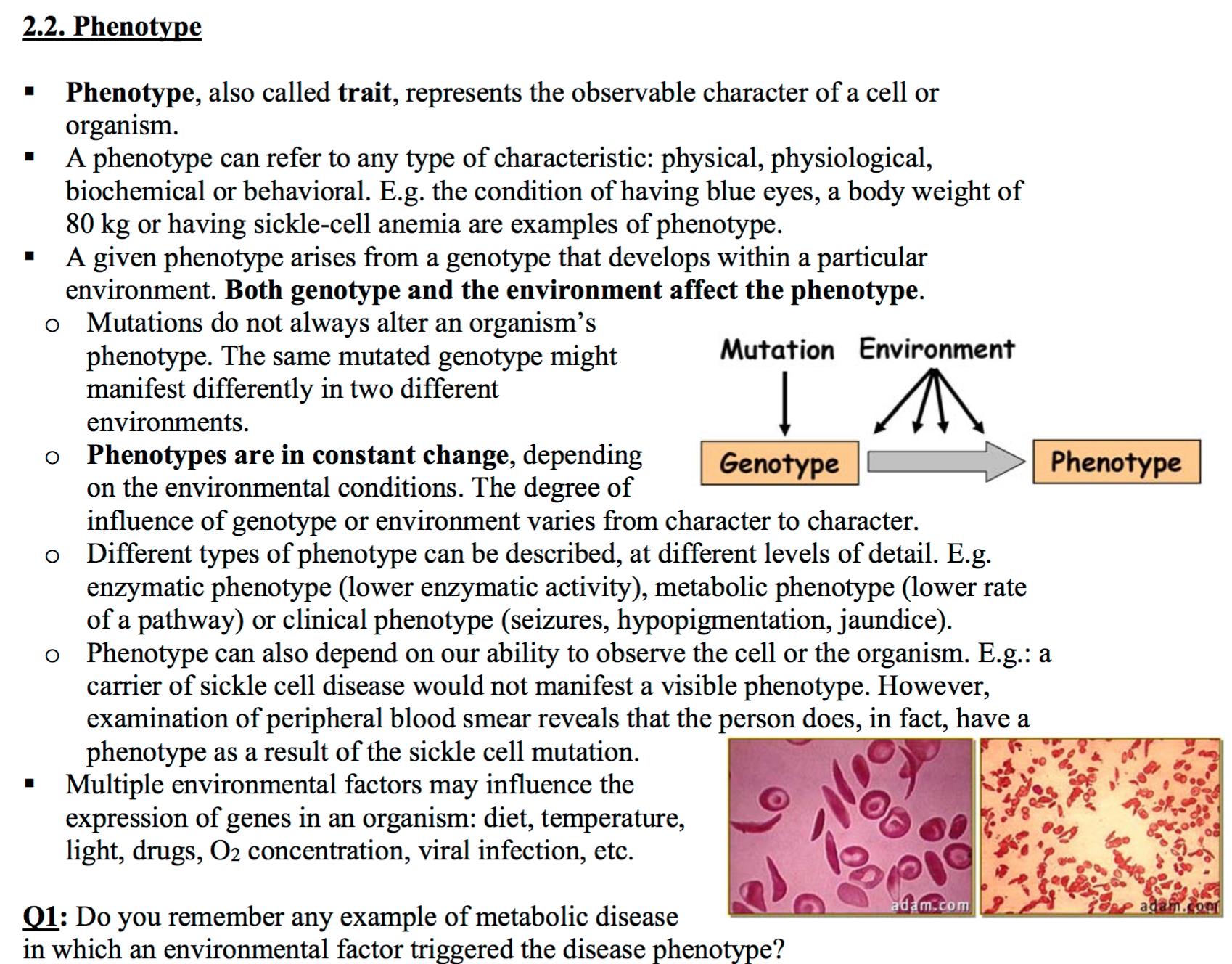 Ccf L1 Polymorphisms And Genetic Mutations Biocg Exam W1