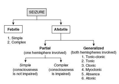 Comatose Patients, Seizures (NBME Pediatrics Shelf Exam