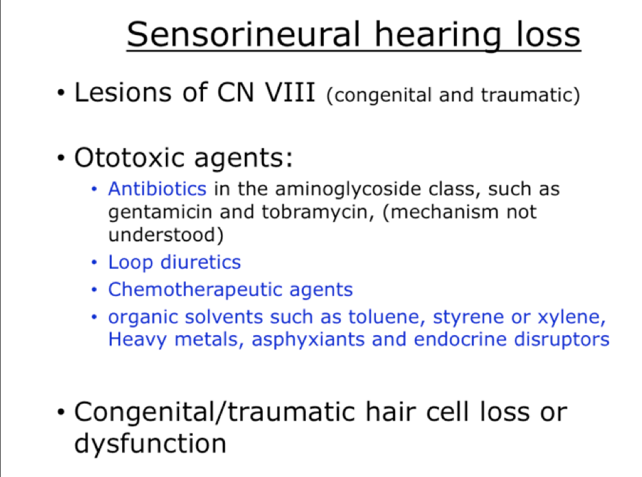 Week 13 - Special Senses, Auditory & Olfactory (Physiology