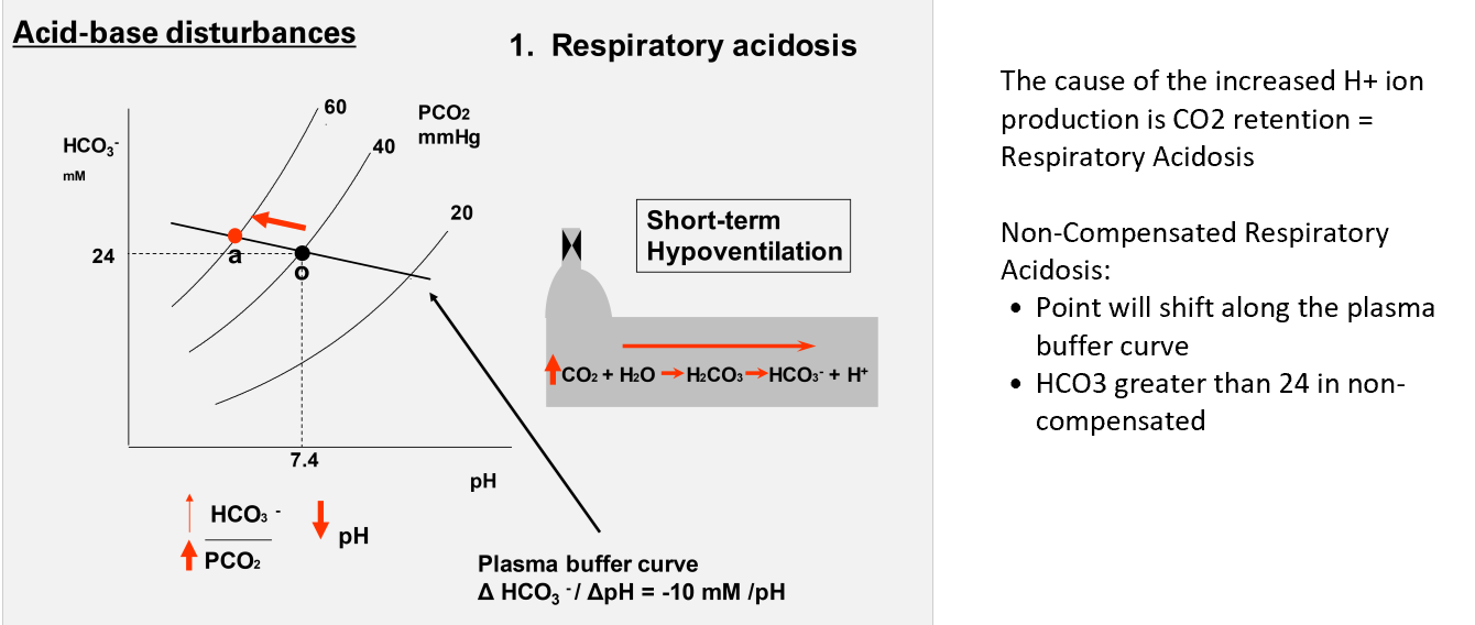 Acid base balance week 5 flashcards memorang what change do you see in a davenport diagram during respiratory acidosis without compensation ccuart Images