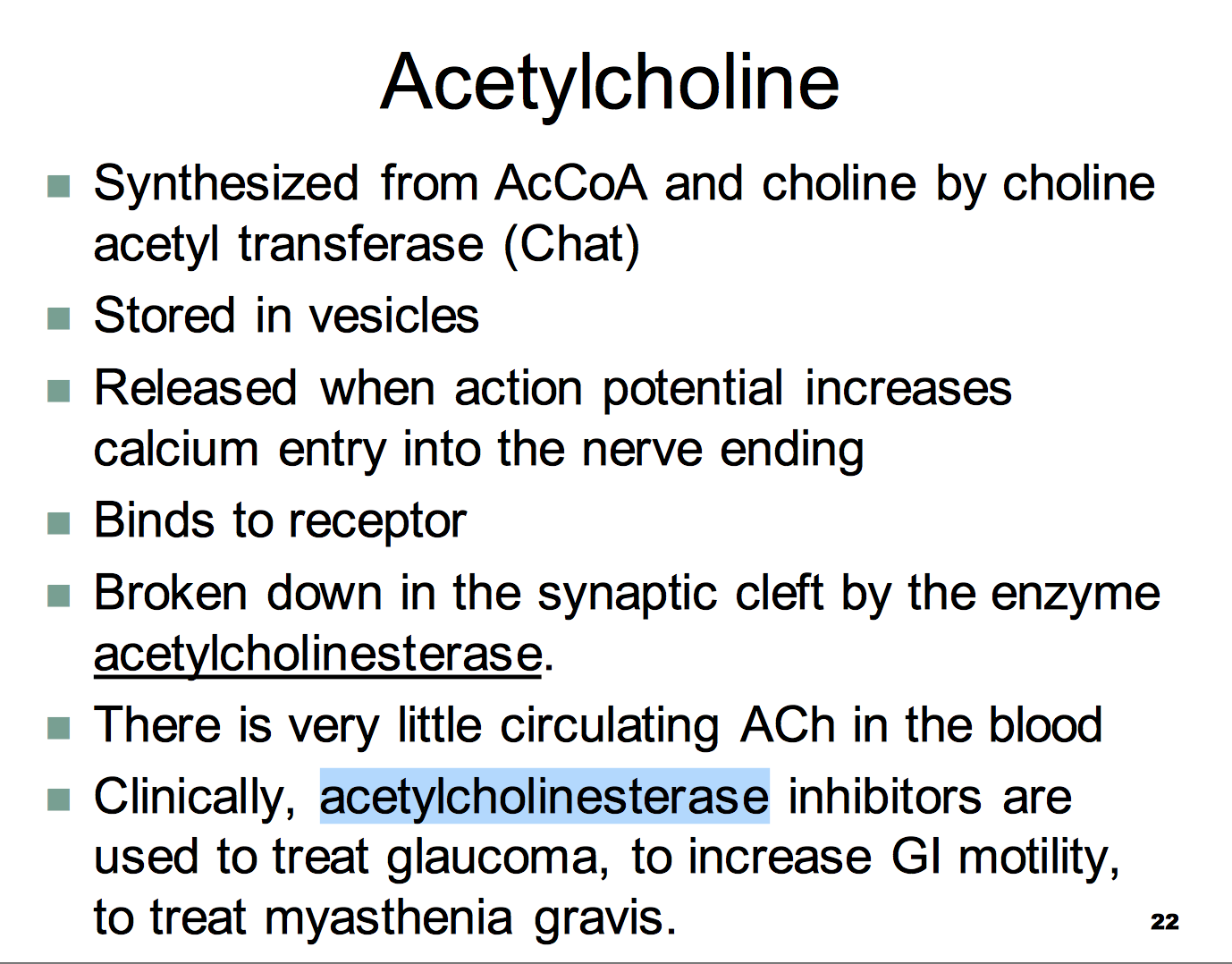 What Is Acetylcholine