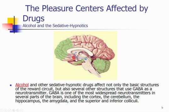 Behavioral med addiction behavioral medicine flashcards memorang gaba ccuart Image collections