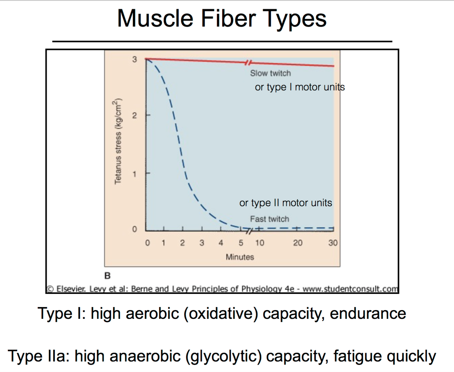 CCF Physiology L13 Skeletal Muscle Fibers and Tendons (Unit